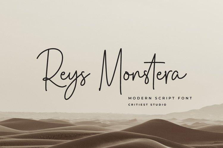 Reys Monstera example image 1
