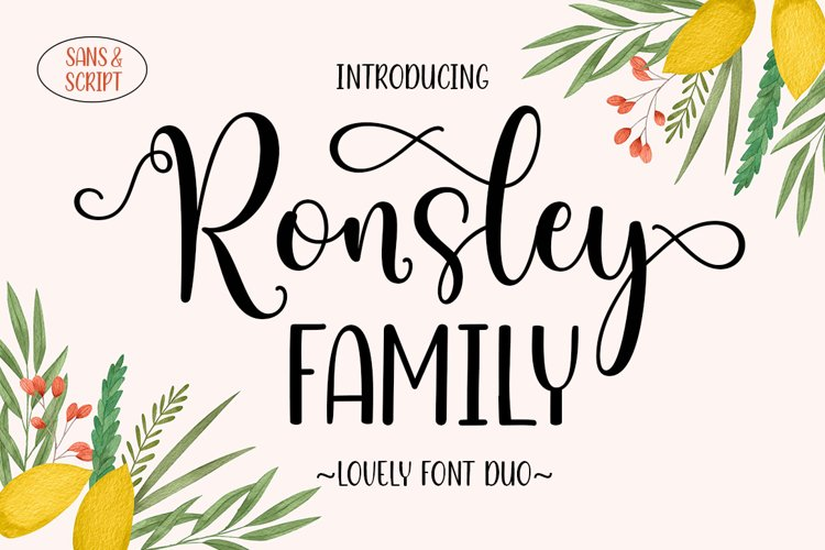 Ronsley Family Font Duo example image 1