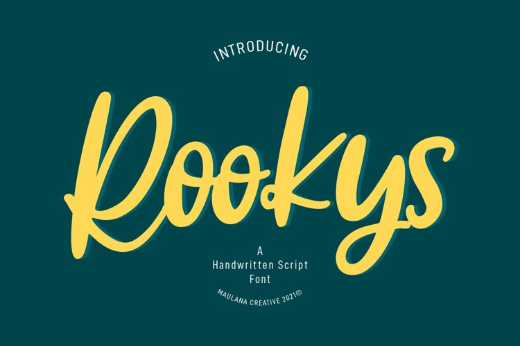 Rookys Handwritten Script Font example image 1