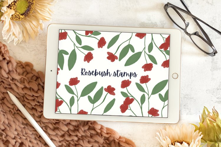 Rosebush Stamp Kit - Watercolor Procreate Stamps example