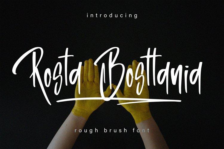 Rosta Bosttania - Brush Script Font example image 1
