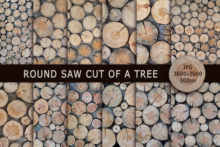 Round saw cut of a tree