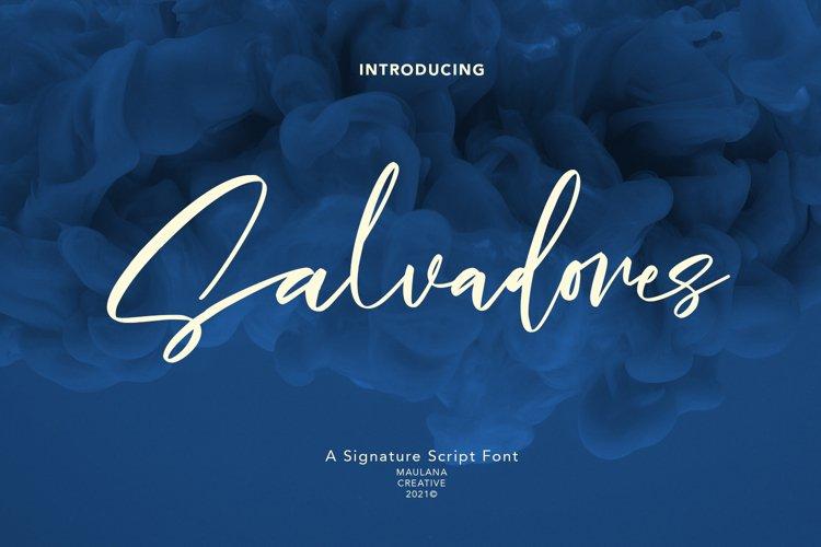 Salvadores Signature Script Font example image 1