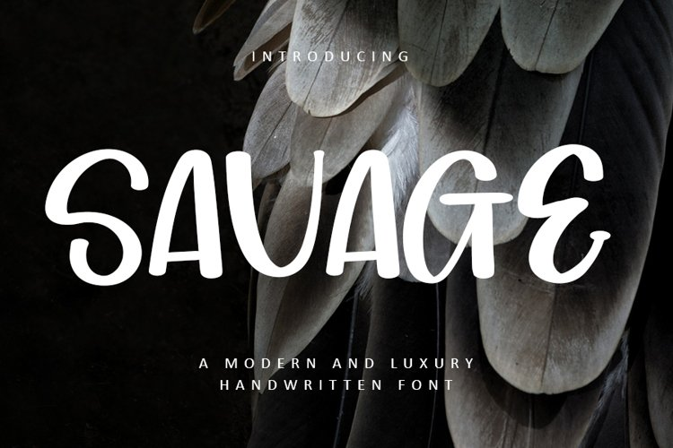 Savage - Luxury Handwritten Font example image 1