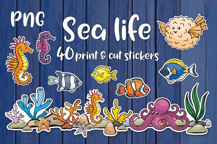 Sea life printable stickers bundle PNG