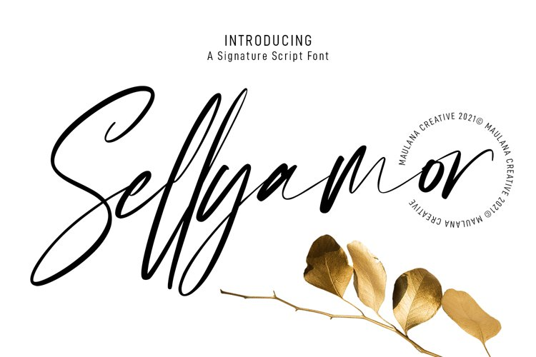 Sellyamor Signature Script Font example image 1