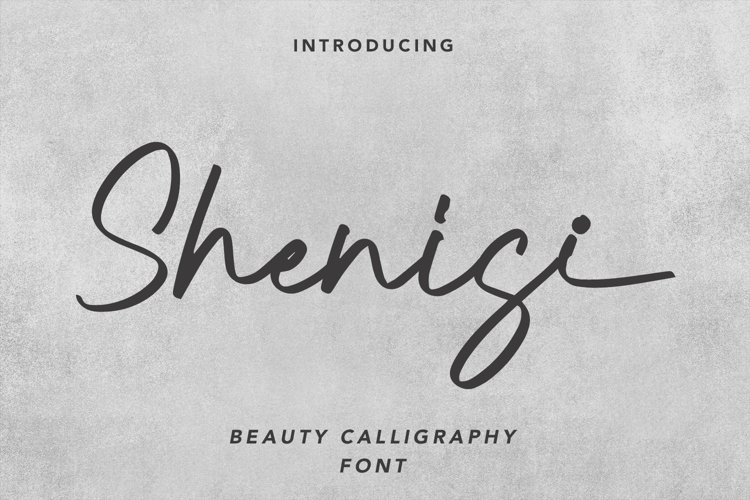 Shenisi - Beauty Calligraphy Font example image 1