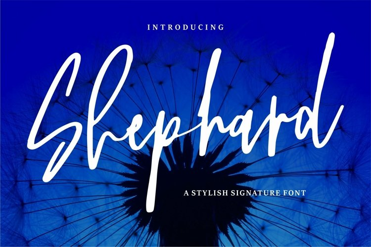 Web Font Shephard - A Stylish Signature Font example image 1
