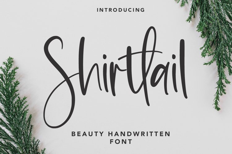 Shirttail - Handwritten Font example image 1