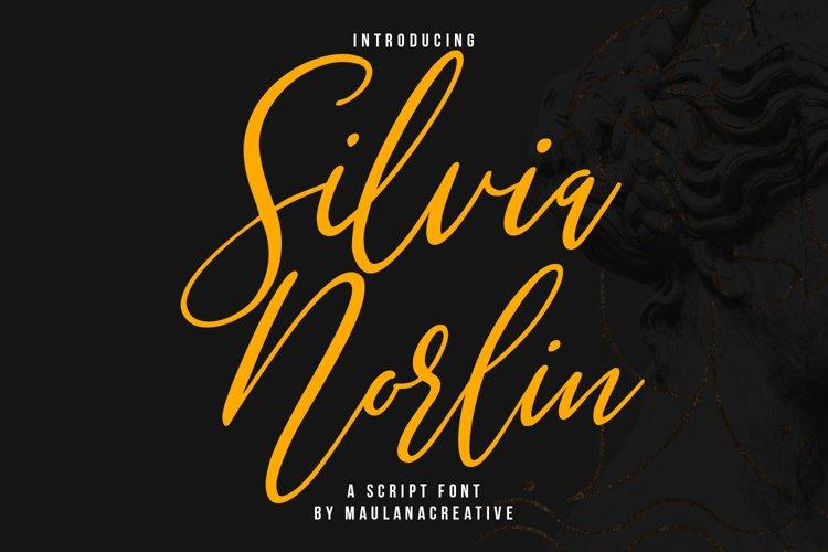 Silvia Norlin Beauty Signature Script Font example image 1