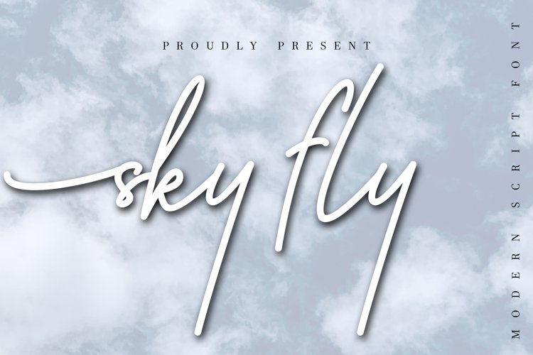 Sky Fly Script example image 1
