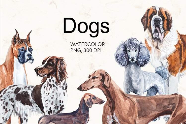 Dogs watercolor collection.