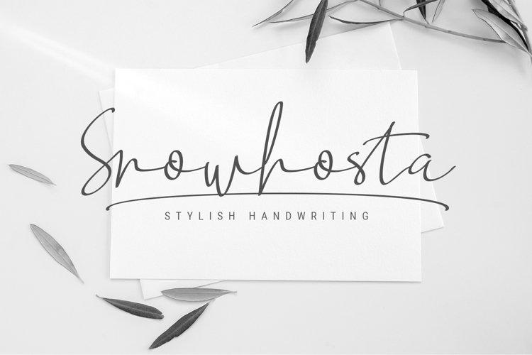 Snowhosta - handwritten script font example image 1