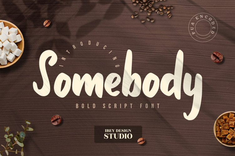 Somebody - Bold Script Font example image 1