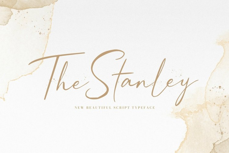 Web Font Stanley example image 1