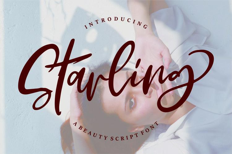 Web Font Starling - A Beauty Script Font