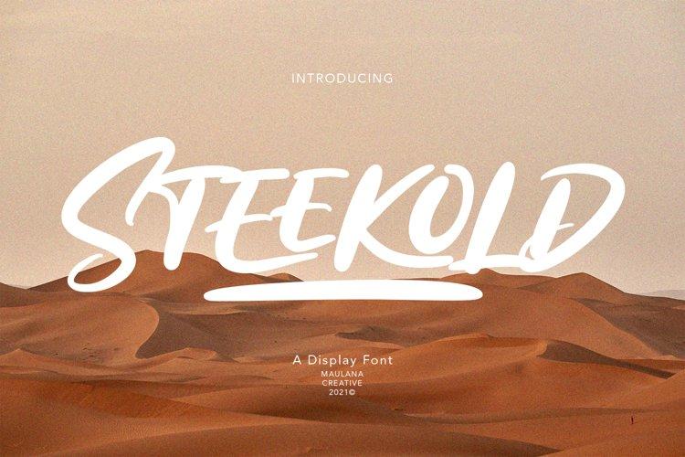 Steekold Display Font example image 1