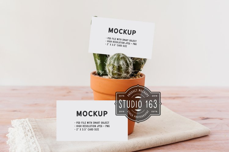 Business Card Mockup, Set of 2 example image 1