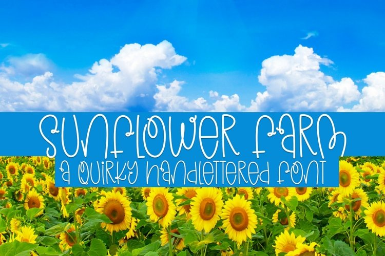 Web Font Sunflower Farm - A Quirky Handlettered Font