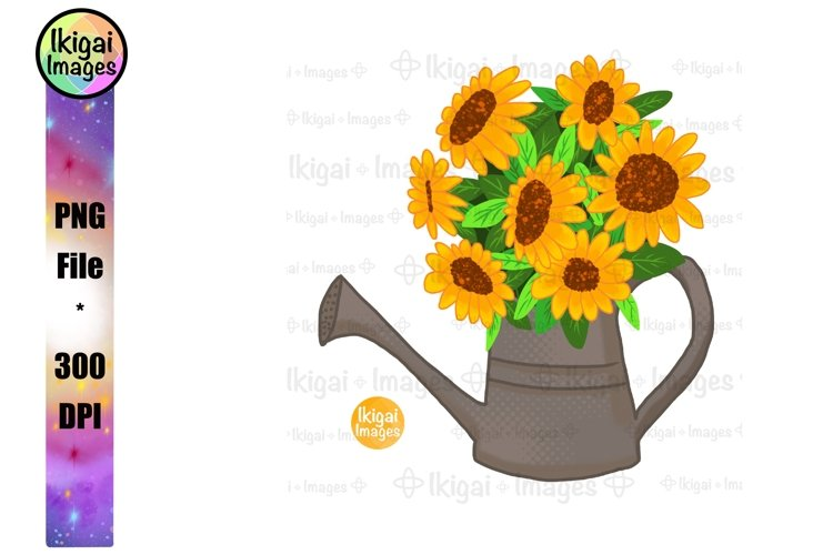 Sunflower Bouquet In Watering Can Sublimation, Boho PNG