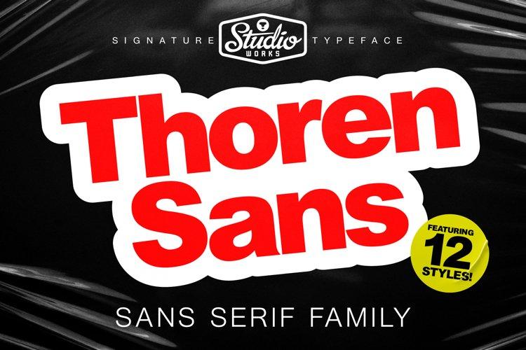 Thoren Sans | Sans Serif Type Family example image 1