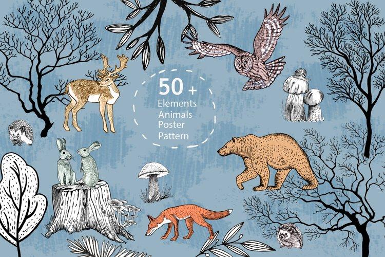 Forest animals, trees, mushrooms.