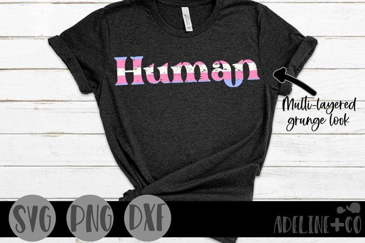 Human | Transgender Pride, SVG, PNG, DXF example image 1