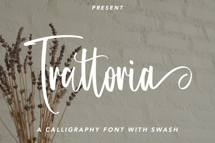 Trattoria - Calligraphy Font with Swash example image 1