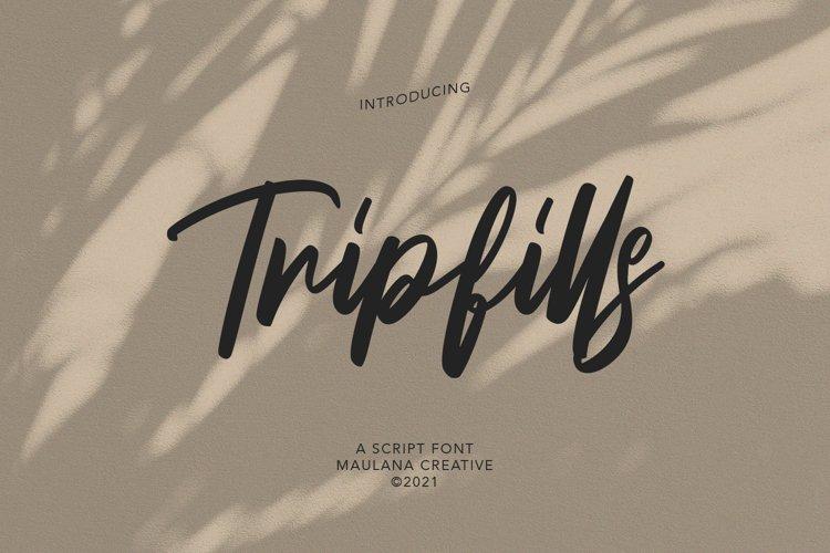 Tripfills Script Font example image 1