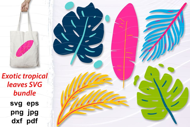 Tropical leaves svg bundle, palm and monstera leaves png
