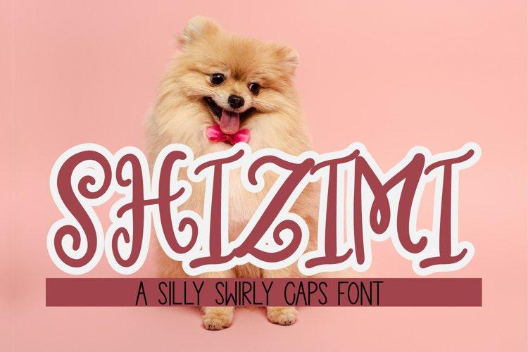 Shizimi - A whimsical swirly caps font example image 1