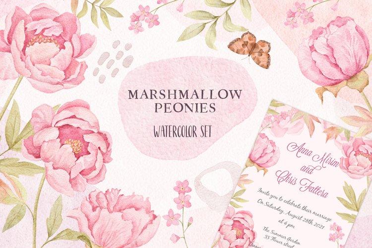 Marshmallow Peonies - Watercolor Set