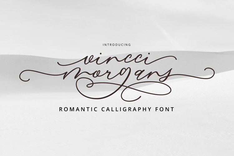 Vincci Morgans Script example image 1
