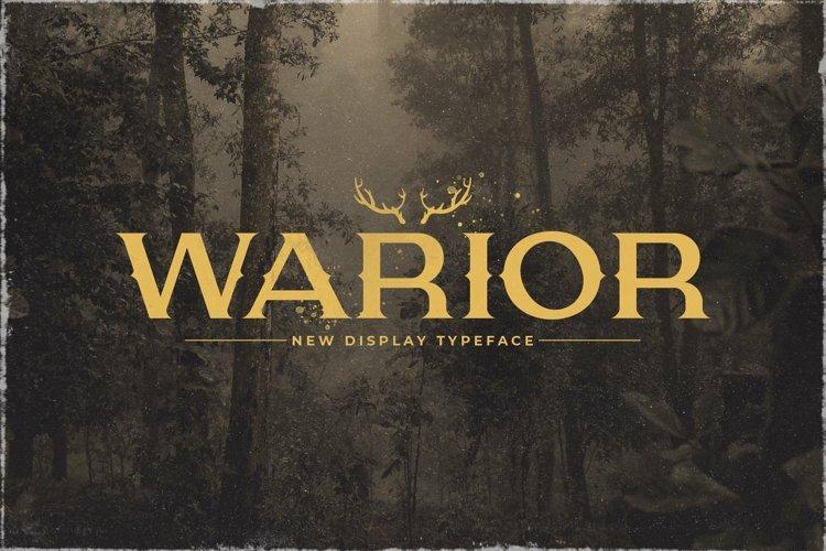 Web Font Warior example image 1
