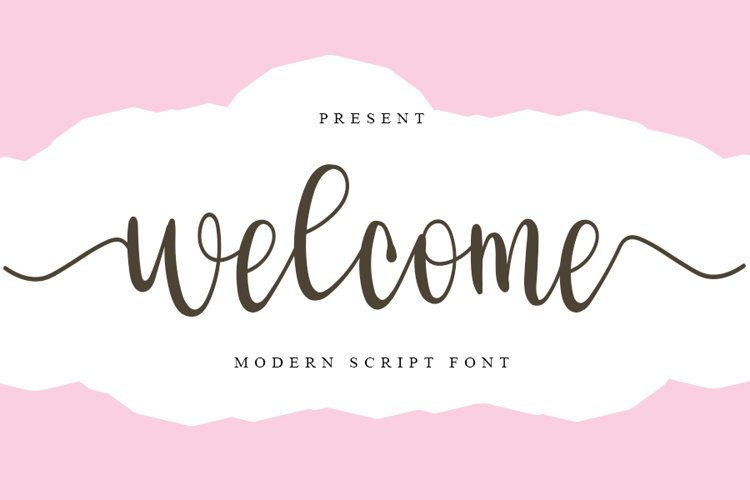 Welcome - Modern Script Font example image 1