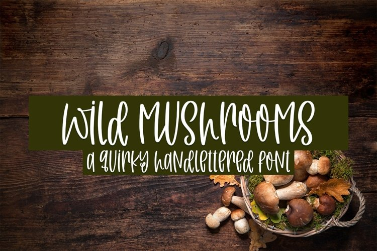 Web Font Wild Mushrooms - A Quirky Handlettered Font