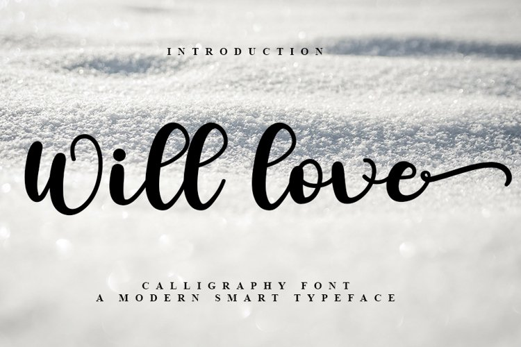 Will Love - New Calligraphy Font example image 1