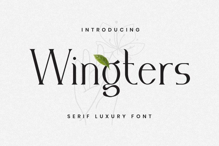 Web Font Wingters Font example image 1