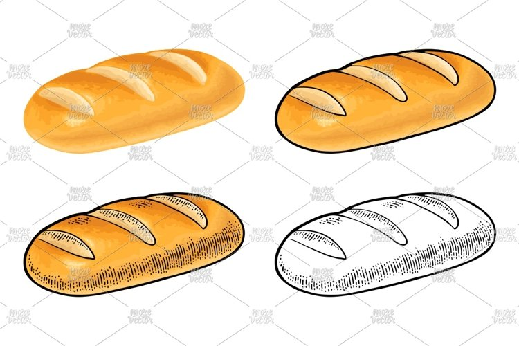 Loaf of bread. Vector color realistic and engraving
