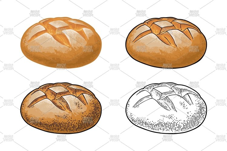 Rye bread. Vector color realistic and engraving on the white example image 1